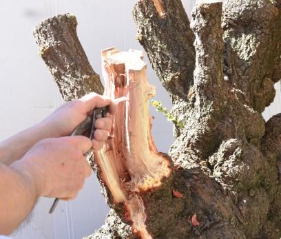 como se puede ver la madera es muy fibrosa y permite el trabajo con fibras sin problemas, obteniendo resultados muy naturales .